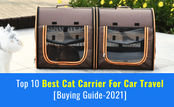 best cat carrier for car travel